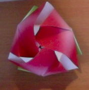 My magic cube rose with fluffed out petals!