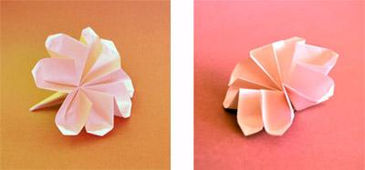 Origami Flower Video