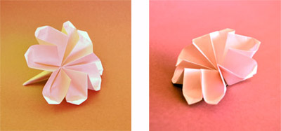 Origami Flower Video Instructions - photo#29