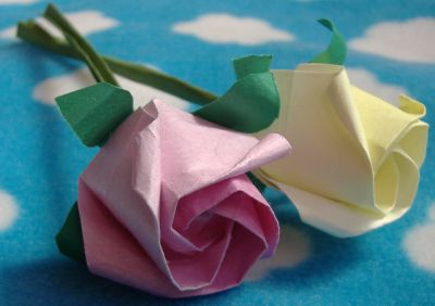 Roses I have made