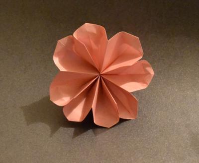 8-petal flower