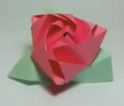 Magic Cube Rose, by Valerie Vann