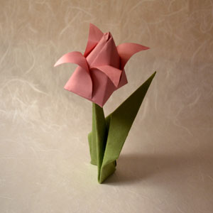 Origami tulip instructions the origami tulip instructions below will have you making your very own tulip in minutes this tulip design works perfectly with the origami flower stem mightylinksfo