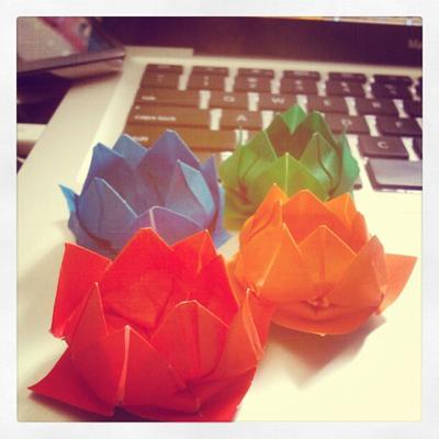 Lotus Success!
